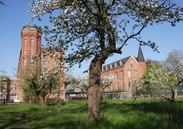 Schoolgebouw vanuit de tuin